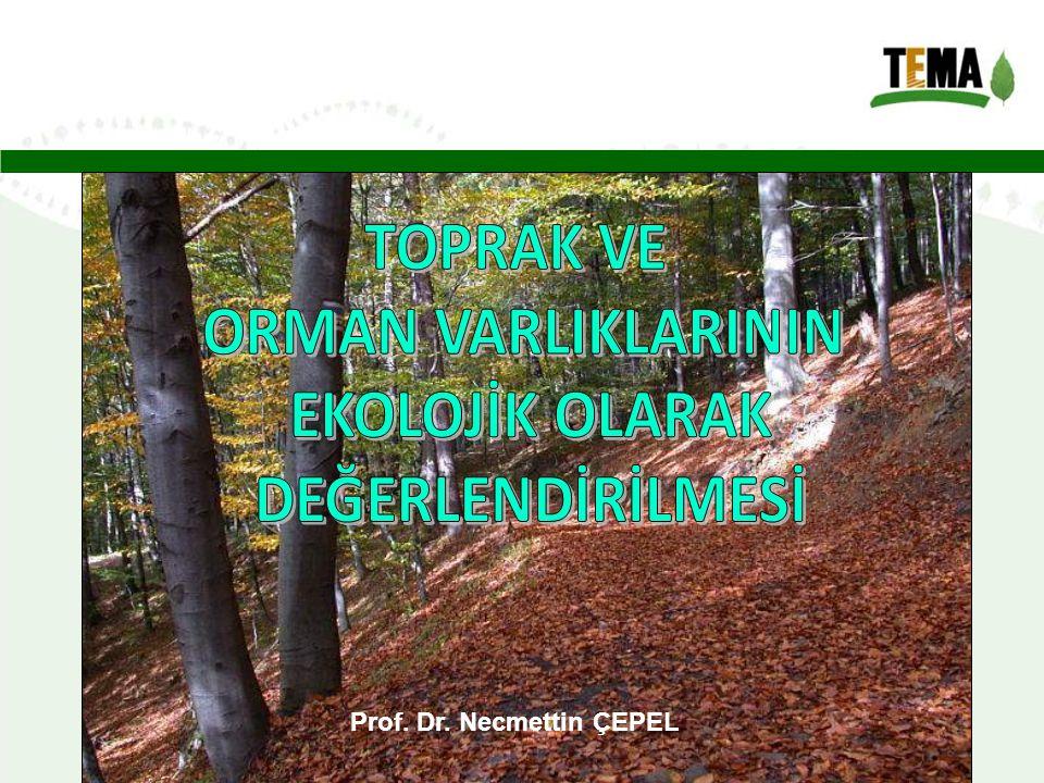 Prof. Dr. Necmettin ÇEPEL