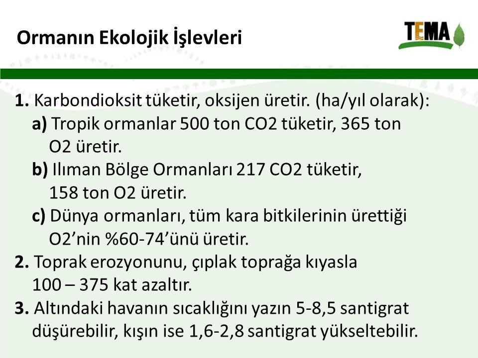Ormanın Ekolojik İşlevleri 1.Karbondioksit tüketir, oksijen üretir.