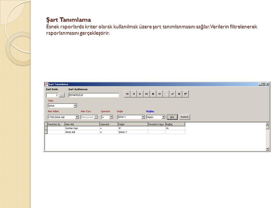 Şart Tanımlama Esnek raporlarda kriter olarak kullanılmak üzere şart tanımlanmasını sa ğ lar. Verilerin filtrelenerek raporlanmasını gerçekleştirir.