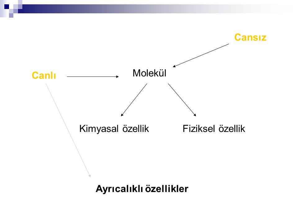  Biyokimya, cansız moleküllerin canlıdaki özelliklerini, fonksiyonlarını ve nedenlerini araştırır.