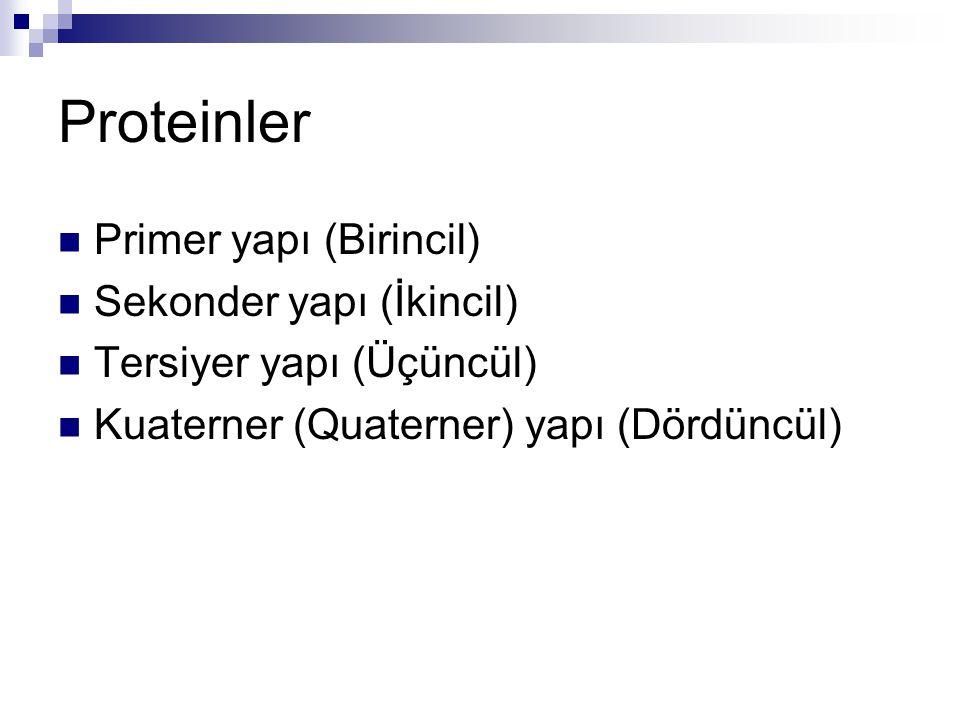 Proteinler  Primer yapı (Birincil)  Sekonder yapı (İkincil)  Tersiyer yapı (Üçüncül)  Kuaterner (Quaterner) yapı (Dördüncül)