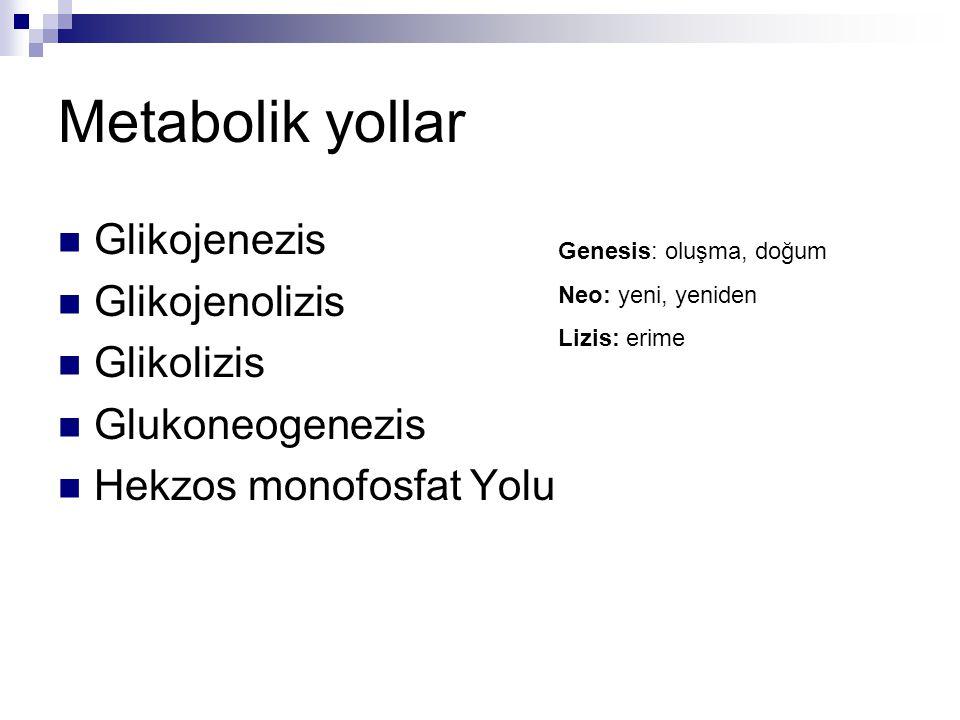 Glikojen GlukozDiyet Glikojenez Glikojenoliz GlikolizGlikoneogenez Piruvat