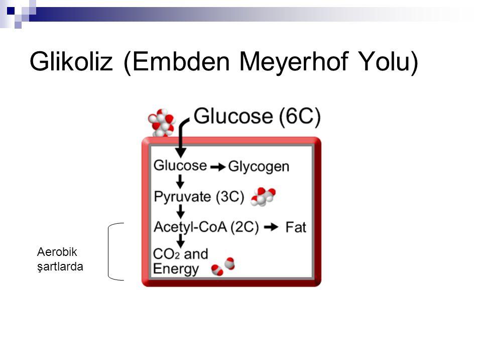 Glikoliz (Embden Meyerhof Yolu) Aerobik şartlarda