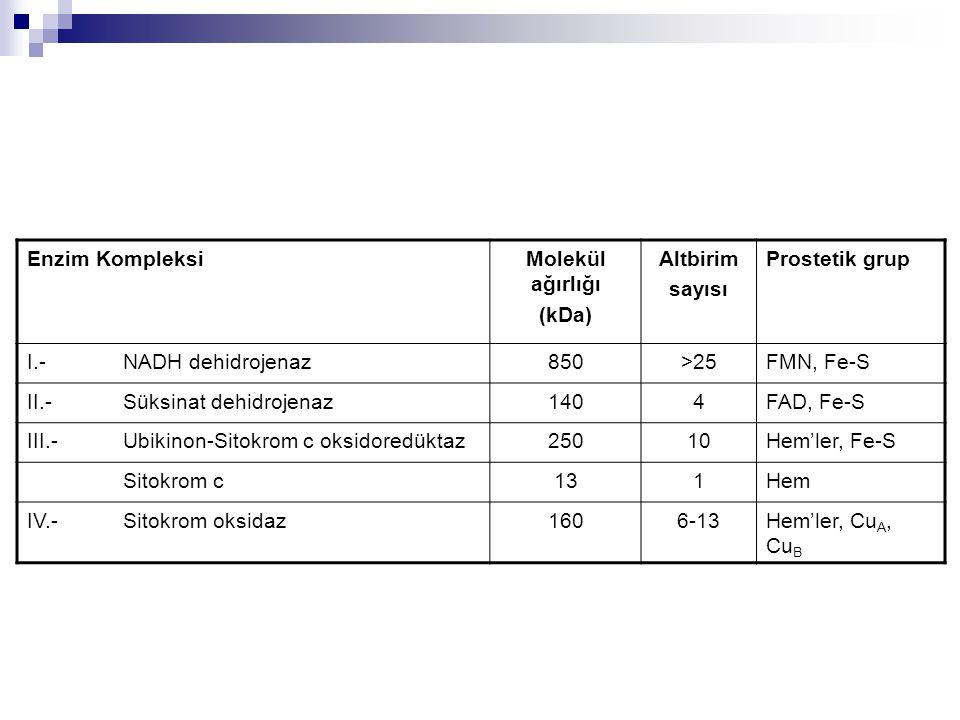 Enzim KompleksiMolekül ağırlığı (kDa) Altbirim sayısı Prostetik grup I.- NADH dehidrojenaz850>25FMN, Fe-S II.- Süksinat dehidrojenaz1404FAD, Fe-S III.