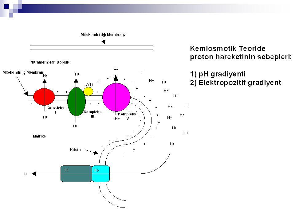 Mathews, Biochemistry, 1990