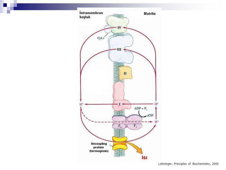 Krebs Döngüsünün Enerjetiği  1 mol Asetil CoA Krebs döngüsüne girmesi ile: İzositrat'dan okzalosüksinat oluşumu1NADH3 ATP  -Ketoglutarat'dan Süksinil CoA oluşumu 1 NADH3 ATP Süksinat'dan Fumarat oluşumu 1 FADH22 ATP Malat'dan Okzaloasetat oluşumu 1 NADH3 ATP Süksinil CoA basamağında substrat seviyesinde fosforilasyon -1 ATP TOPLAM12 ATP