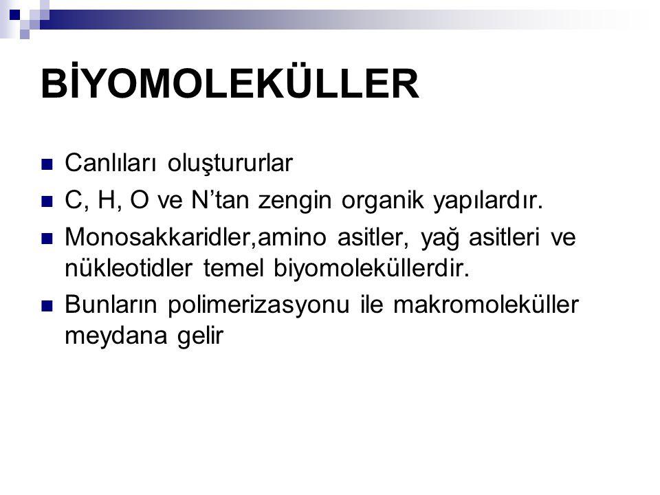 Yaşamın kimyasal elemanları  Biyomoleküller: canlılığın molekülleri.