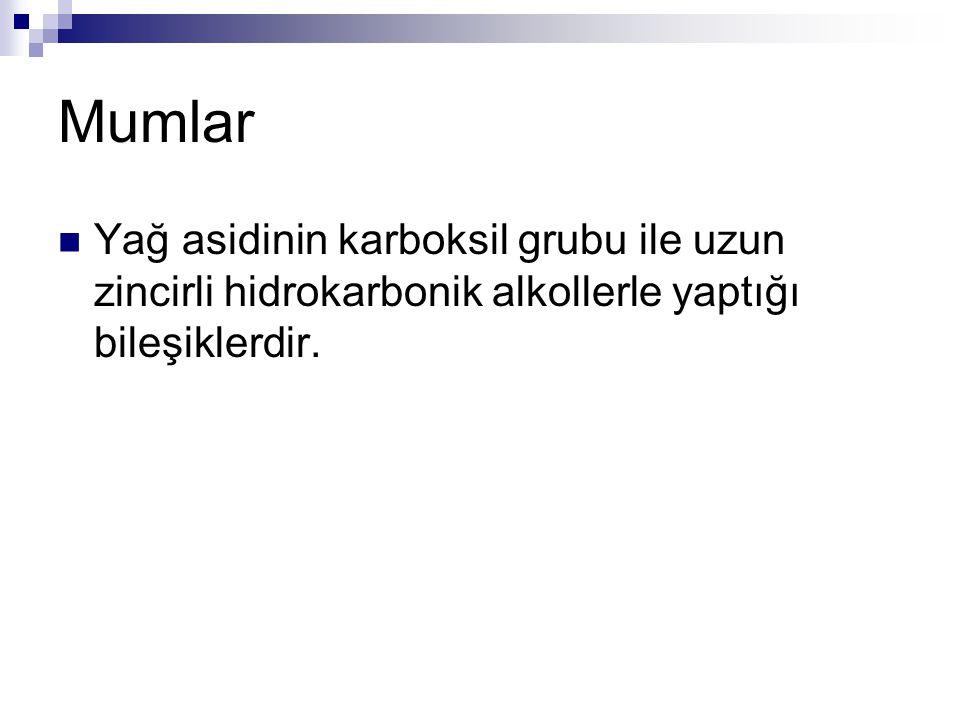 Lipidler: Gliserolipidler