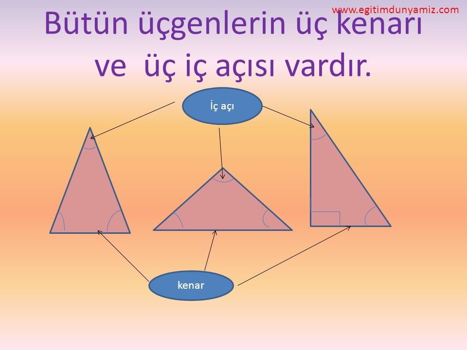 Bütün üçgenlerin üç kenarı ve üç iç açısı vardır. kenar İç açı www.egitimdunyamiz.com