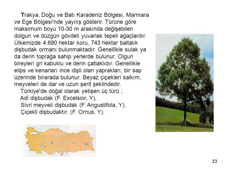 33 Trakya, Doğu ve Batı Karadeniz Bölgesi, Marmara ve Ege Bölgesi nde yayılış gösterir.
