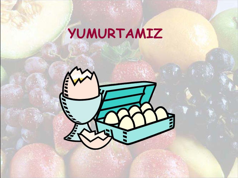 YUMURTAMIZ