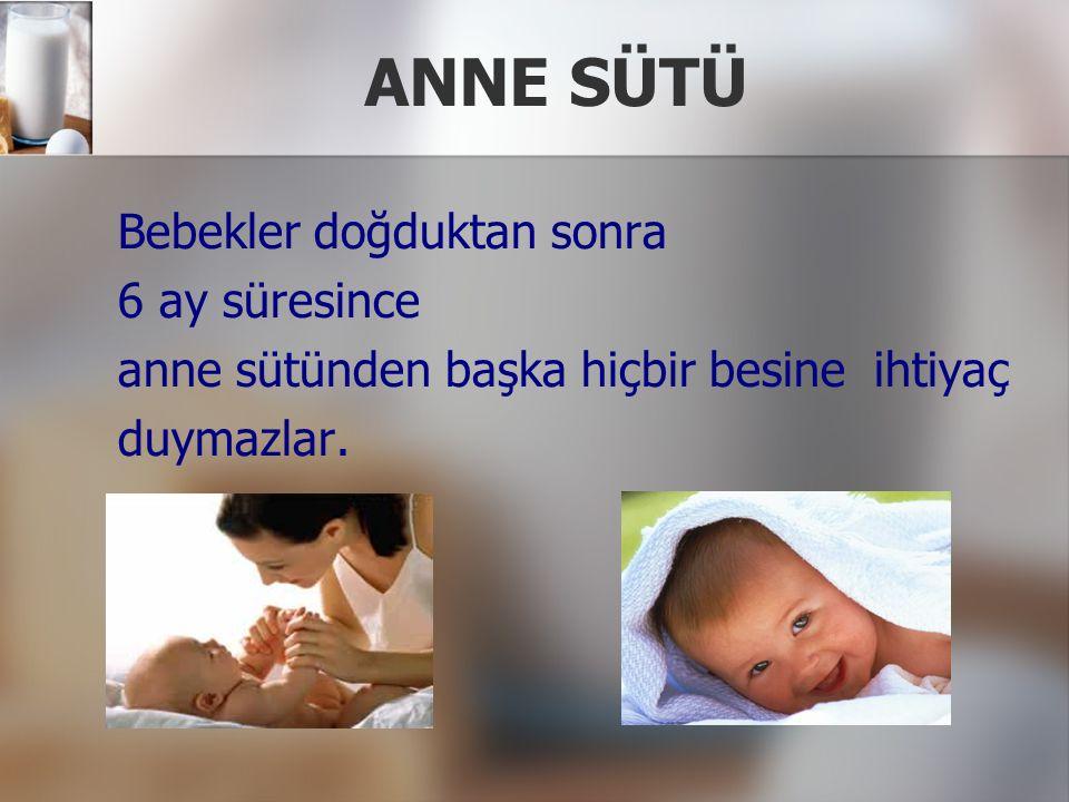 ANNE SÜTÜ Bebekler doğduktan sonra 6 ay süresince anne sütünden başka hiçbir besine ihtiyaç duymazlar.