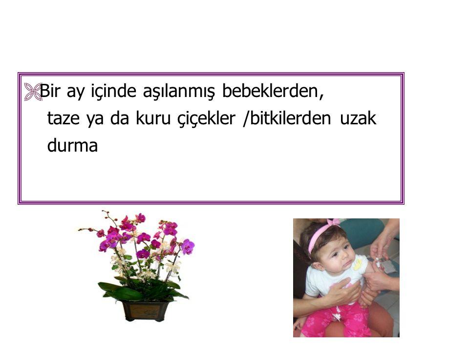  Bir ay içinde aşılanmış bebeklerden, taze ya da kuru çiçekler /bitkilerden uzak durma