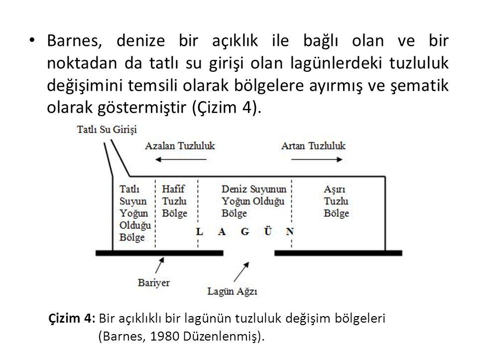 • Barnes, denize bir açıklık ile bağlı olan ve bir noktadan da tatlı su girişi olan lagünlerdeki tuzluluk değişimini temsili olarak bölgelere ayırmış ve şematik olarak göstermiştir (Çizim 4).