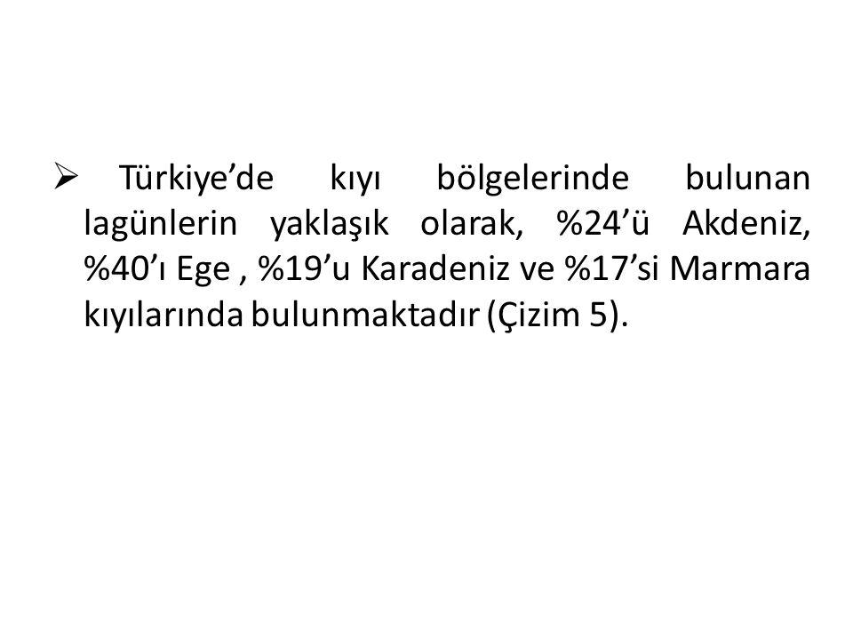  Türkiye'de kıyı bölgelerinde bulunan lagünlerin yaklaşık olarak, %24'ü Akdeniz, %40'ı Ege, %19'u Karadeniz ve %17'si Marmara kıyılarında bulunmaktadır (Çizim 5).