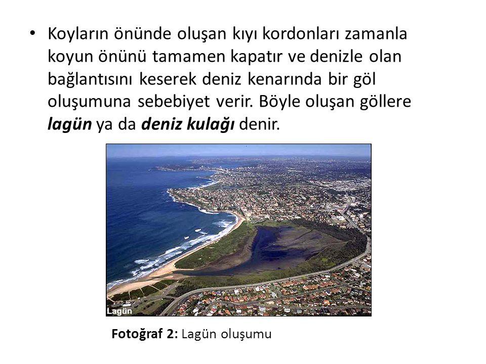 • Dünyadaki kıyıların yaklaşık %13'ünü oluşturan lagünler (Kjerfve, 1986), ekolojik açıdan büyük önem taşıyan özel ekosistemlerdir.