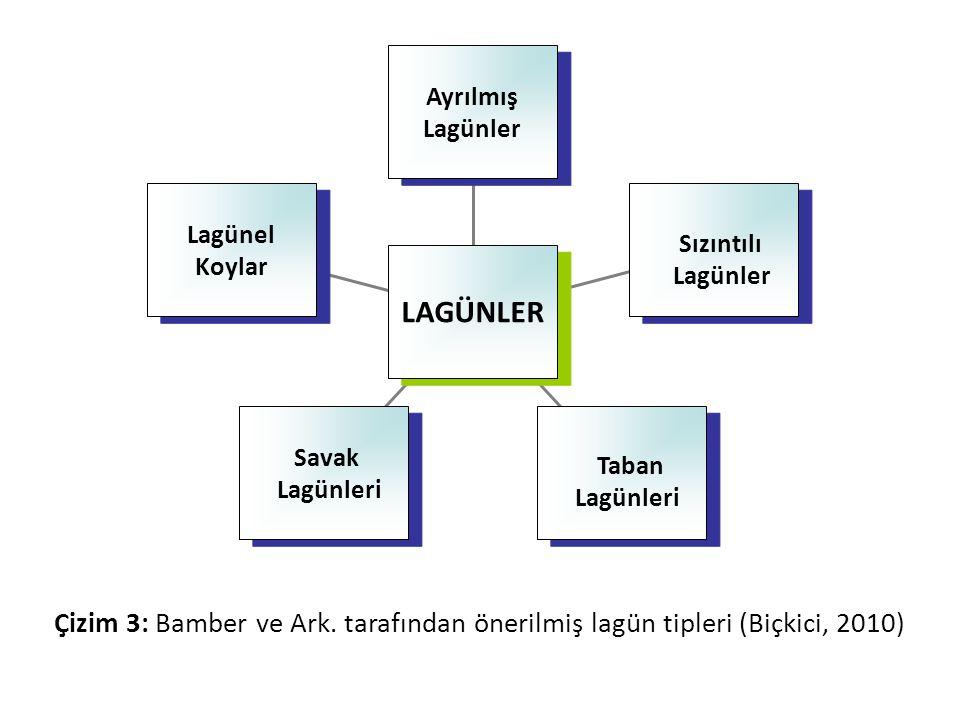 • Bamber ve arkadaşları tarafından yapılan bu sınıflandırmada, lagün hidrodinamiğini, morfolojisini ve ekolojik özelliklerini etkileyecek parametreler göz önüne alınarak tanımlamalar yapılmıştır (Çizelge 1).