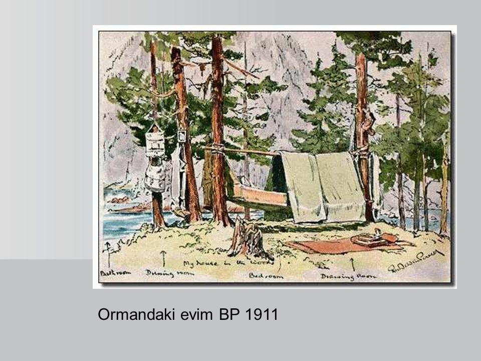 Ormandaki evim BP 1911