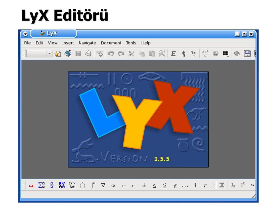LyX'e Başlarken, Bu WYSIWYM (What You Say Is What You Mean) editörü ile bir dosya açılır.
