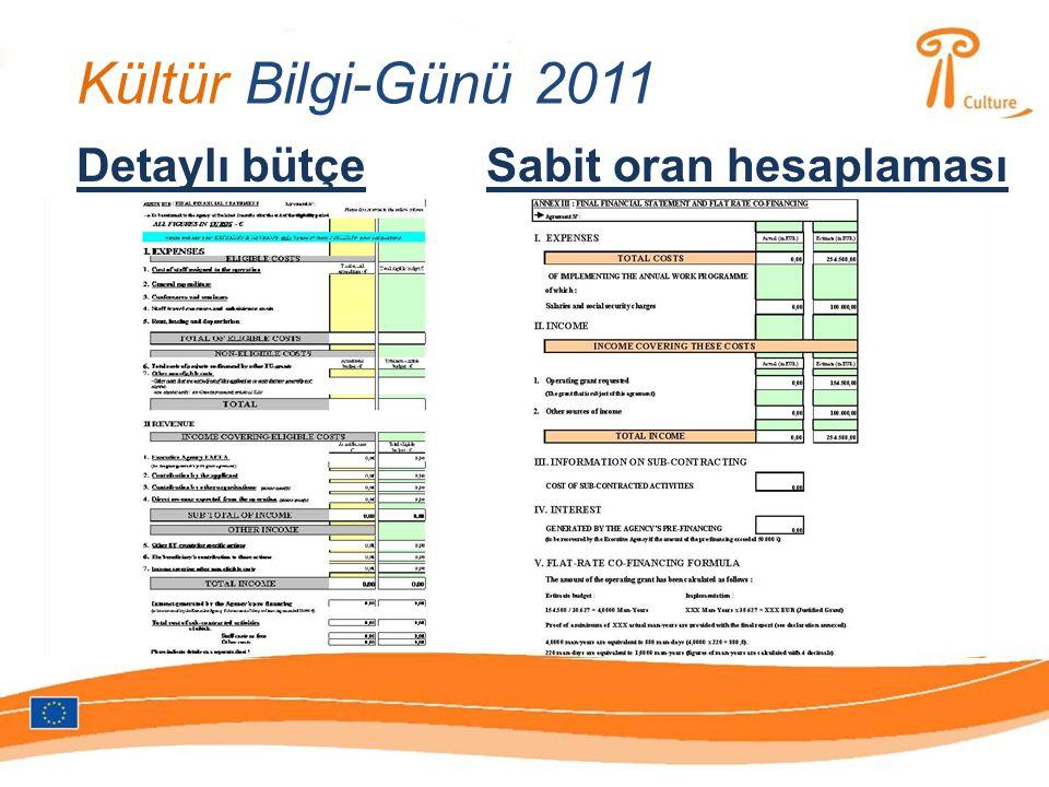 Kültür Bilgi-Günü 2011 Detaylı bütçeSabit oran hesaplaması