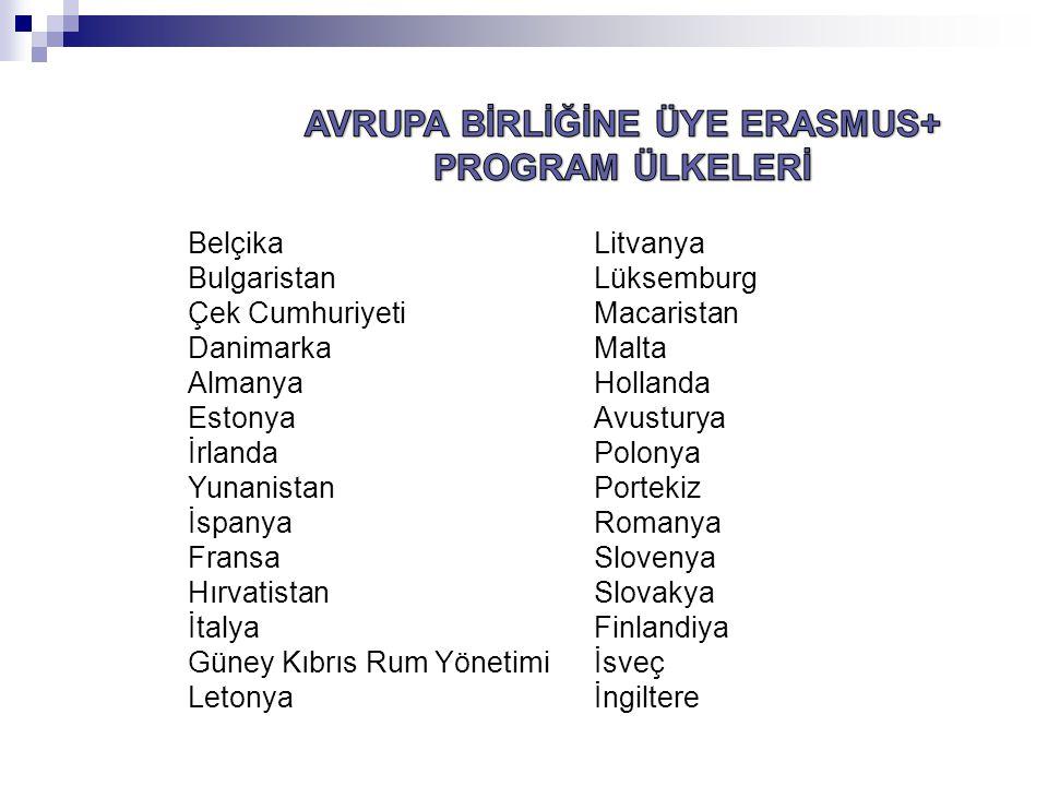 Erasmus + Makedonya İzlanda Lihtenştayn Norveç İsviçre Türkiye