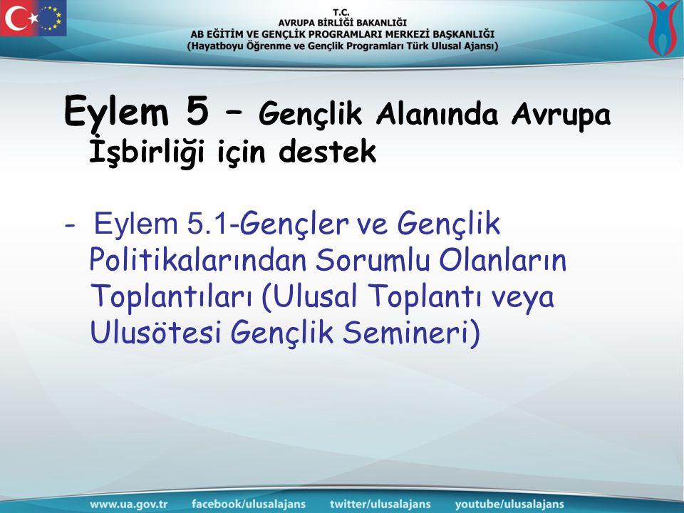 Eylem 5 – Gençlik Alanında Avrupa İşbirliği için destek - Eylem 5.1- Gençler ve Gençlik Politikalarından Sorumlu Olanların Toplantıları (Ulusal Toplan