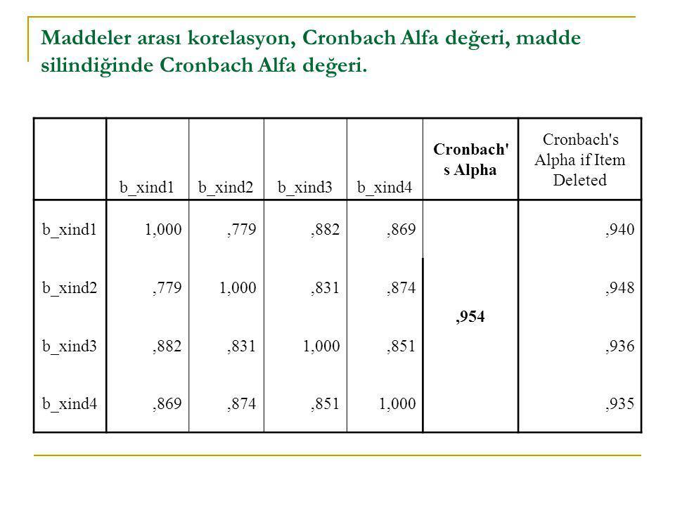 Maddeler arası korelasyon, Cronbach Alfa değeri, madde silindiğinde Cronbach Alfa değeri. b_xind1b_xind2b_xind3b_xind4 Cronbach' s Alpha Cronbach's Al