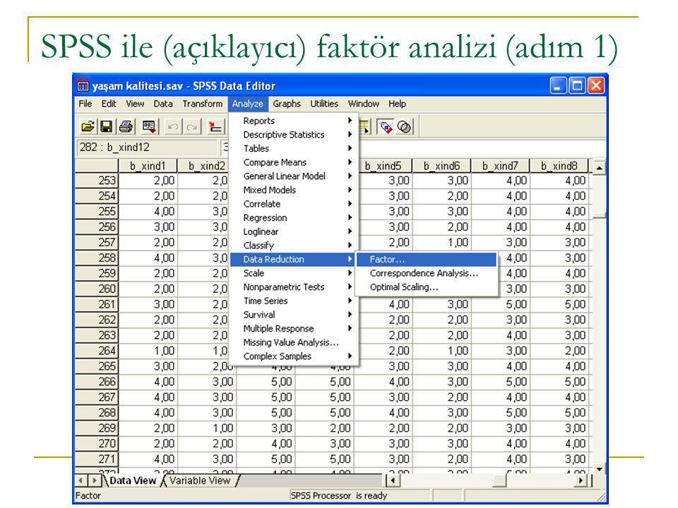 SPSS ile (açıklayıcı) faktör analizi (adım 1)
