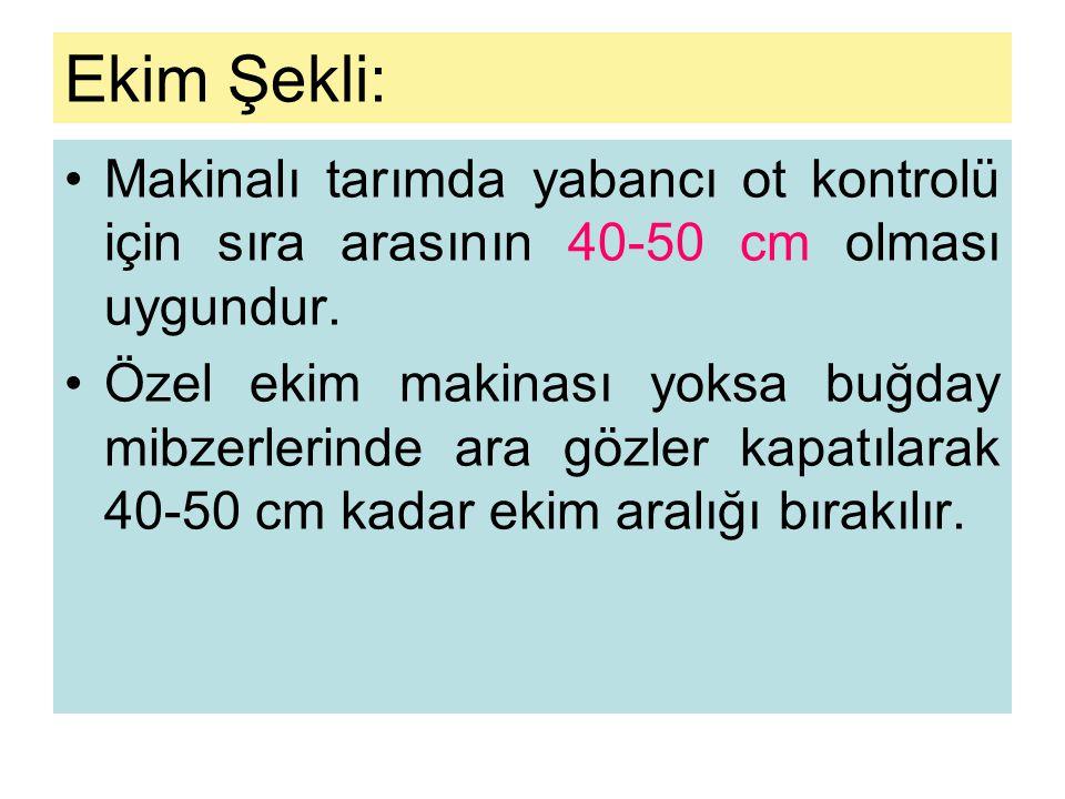 Ekim Şekli: •Makinalı tarımda yabancı ot kontrolü için sıra arasının 40-50 cm olması uygundur.