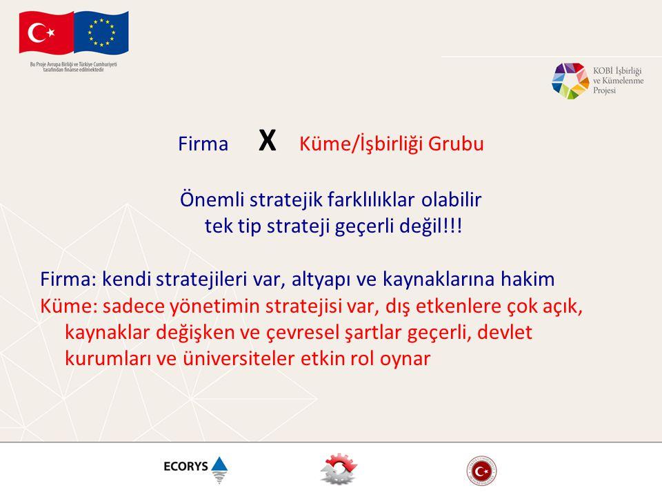 Firma X Küme/İşbirliği Grubu Önemli stratejik farklılıklar olabilir tek tip strateji geçerli değil!!! Firma: kendi stratejileri var, altyapı ve kaynak