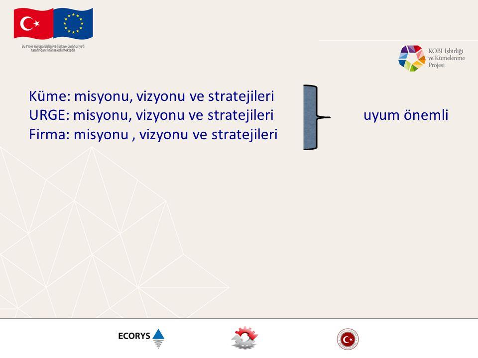 Küme: misyonu, vizyonu ve stratejileri URGE: misyonu, vizyonu ve stratejileri uyum önemli Firma: misyonu, vizyonu ve stratejileri