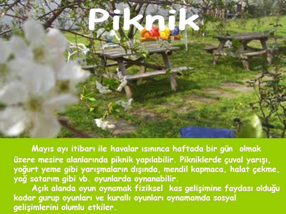 Mayıs ayı itibarı ile havalar ısınınca haftada bir gün olmak üzere mesire alanlarında piknik yapılabilir.