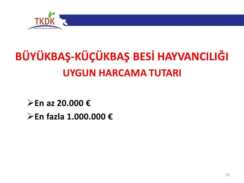 BÜYÜKBAŞ-KÜÇÜKBAŞ BESİ HAYVANCILIĞI UYGUN HARCAMA TUTARI  En az 20.000 €  En fazla 1.000.000 € 28