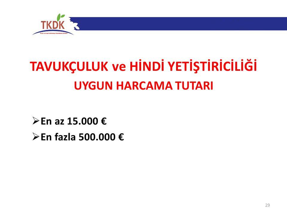 TAVUKÇULUK ve HİNDİ YETİŞTİRİCİLİĞİ UYGUN HARCAMA TUTARI  En az 15.000 €  En fazla 500.000 € 29