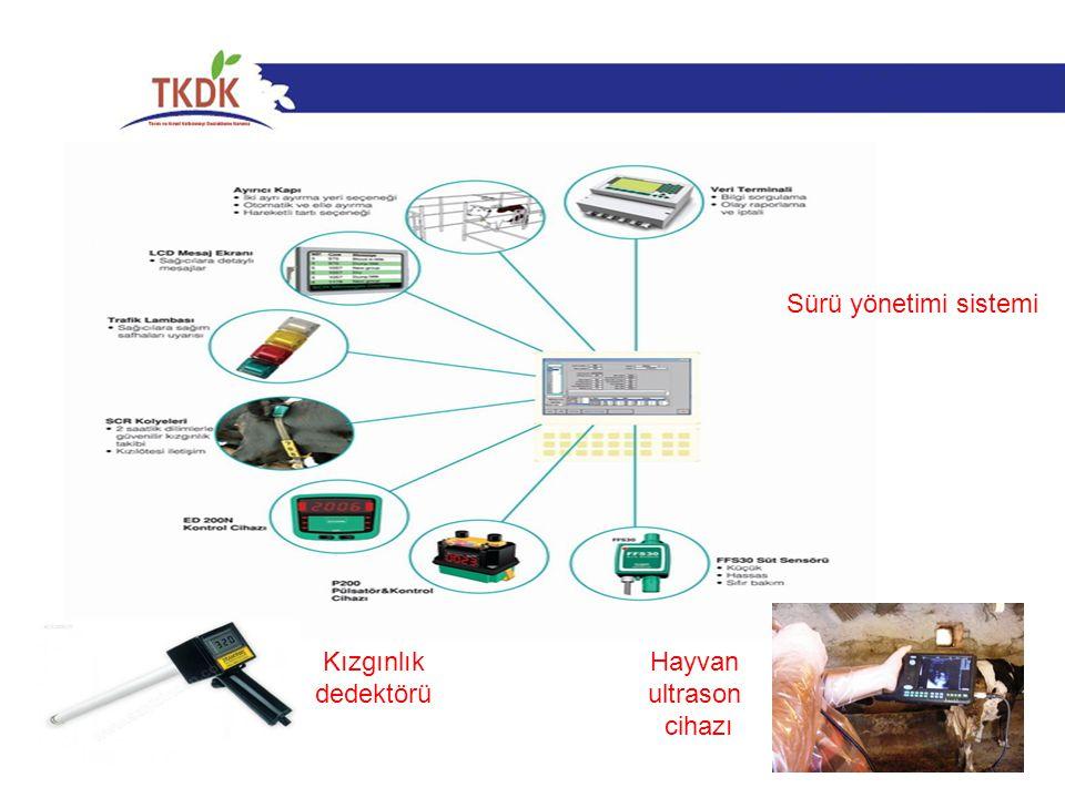 51 Sürü yönetimi sistemi Kızgınlık dedektörü Hayvan ultrason cihazı