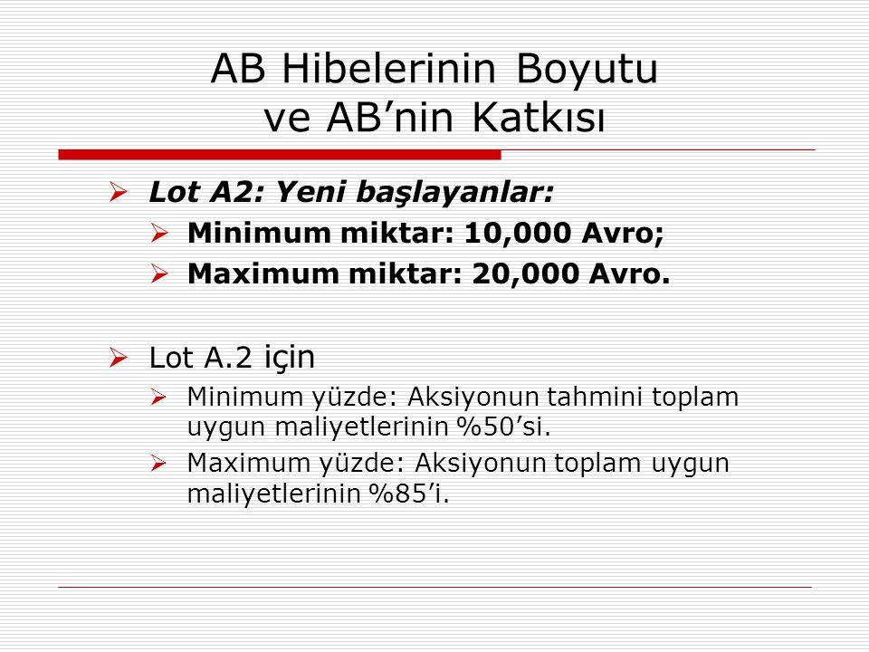 AB Hibelerinin Boyutu ve AB'nin Katkısı  Önlem B (HİZMETLER):  Lot B1: Kurulu işletmeler:  Minimum miktar: 50,000 Avro,  Maximum miktar: 75,000 Avro  Lot B.1 için  Minimum yüzde: Aksiyonun tahmini toplam uygun maliyetlerinin %50'si.