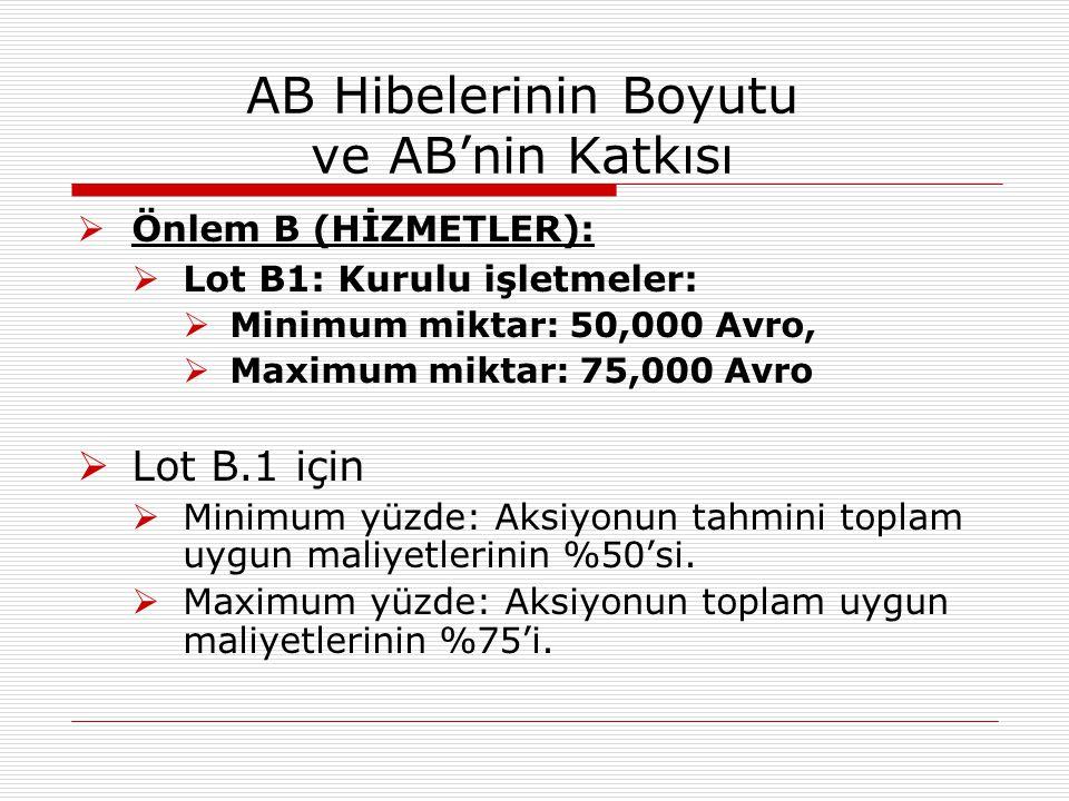 AB Hibelerinin Boyutu ve AB'nin Katkısı  Lot B2: Yeni başlayanlar:  Minimum miktar:10,000 Avro;  Maximum miktar: 20,000 Avro.
