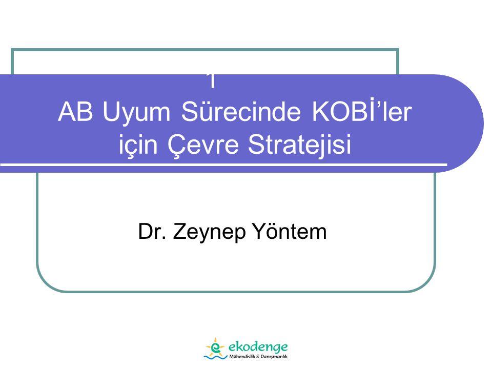 1 AB Uyum Sürecinde KOBİ'ler için Çevre Stratejisi Dr. Zeynep Yöntem