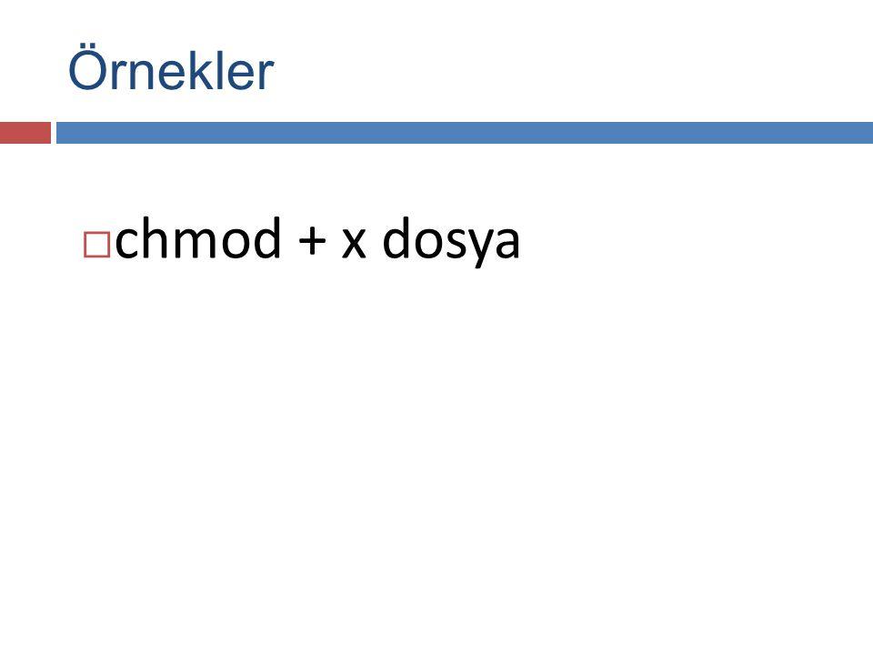 Örnekler  chmod + x dosya