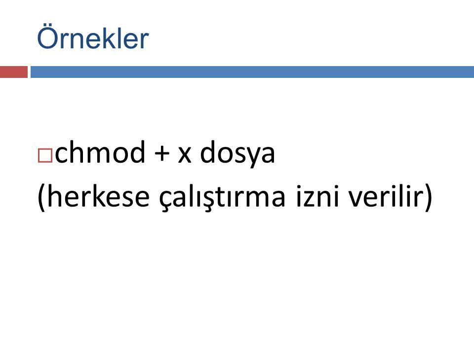 Örnekler  chmod + x dosya (herkese çalıştırma izni verilir)