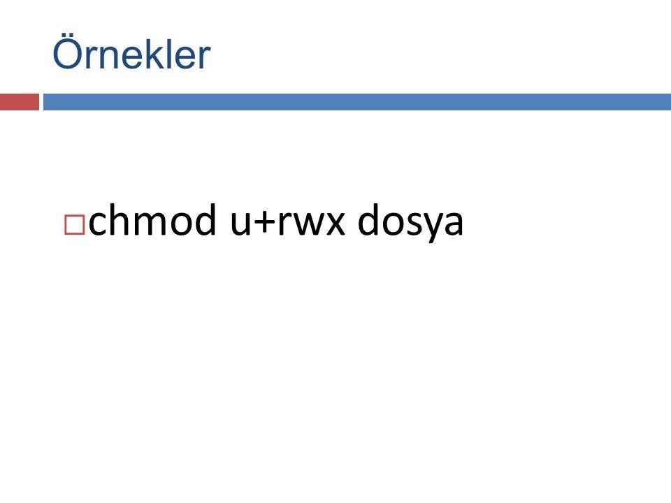  chmod u+rwx dosya Örnekler