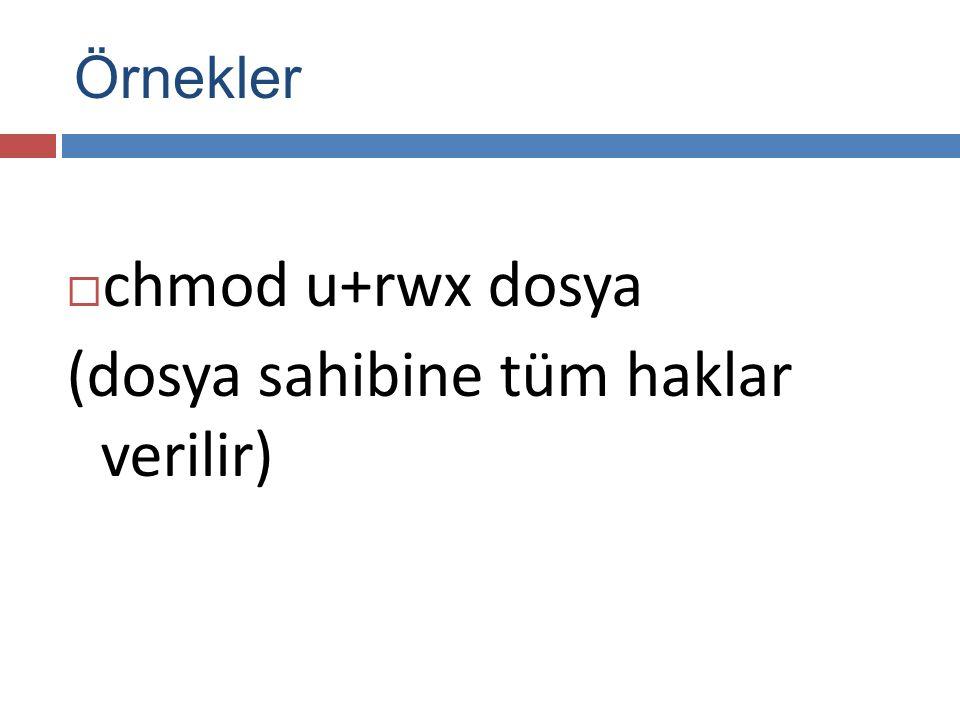  chmod u+rwx dosya (dosya sahibine tüm haklar verilir) Örnekler