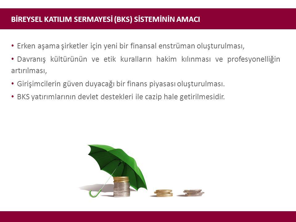 KİMLER BİREYSEL KATILIM YATIRIMCISI (BKY) OLABİLİR.