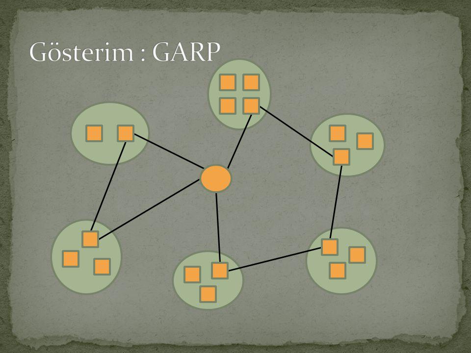  Ghiani ve Improta (2000), GARP'ı Kapasiteli Ark Rotalama Problemine dönüştürerek çözmeyi önerdi ve uyguladı.