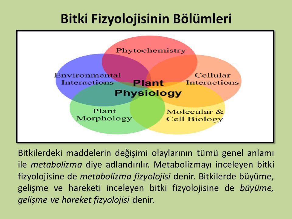 Bitki Fizyolojisinin Bölümleri Bitkilerdeki maddelerin değişimi olaylarının tümü genel anlamı ile metabolizma diye adlandırılır. Metabolizmayı inceley