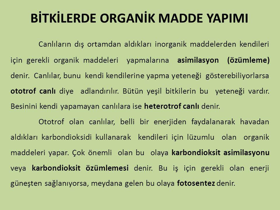 BİTKİLERDE ORGANİK MADDE YAPIMI Canlıların dış ortamdan aldıkları inorganik maddelerden kendileri için gerekli organik maddeleri yapmalarına asimilasy