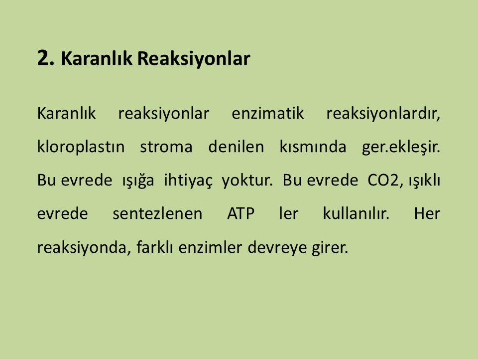 Kemosentez Yeşil olmayan bazı ilkel bitkiler, kendileri için gerekli olan organik besin maddelerini yapmak için (havadan aldıkları karbondioksidi kullanabilmeleri için) gerekli enerjiyi güneşten sağlayamazlar.