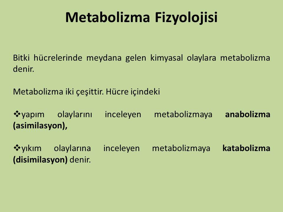 Metabolizma Fizyolojisi Bitki hücrelerinde meydana gelen kimyasal olaylara metabolizma denir. Metabolizma iki çeşittir. Hücre içindeki  yapım olaylar