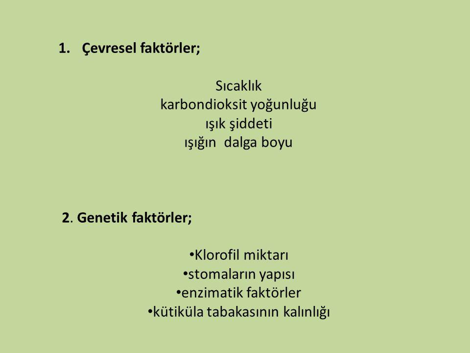 1.Çevresel faktörler; Sıcaklık karbondioksit yoğunluğu ışık şiddeti ışığın dalga boyu 2. Genetik faktörler; • Klorofil miktarı • stomaların yapısı • e