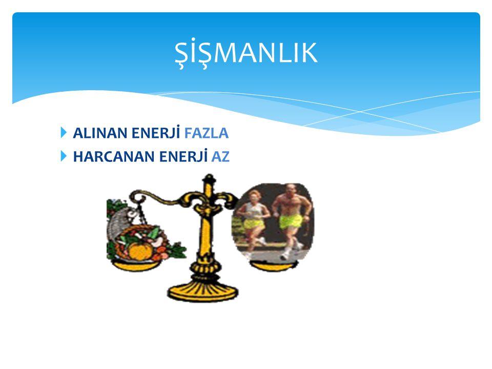  ALINAN ENERJİ FAZLA  HARCANAN ENERJİ AZ ŞİŞMANLIK